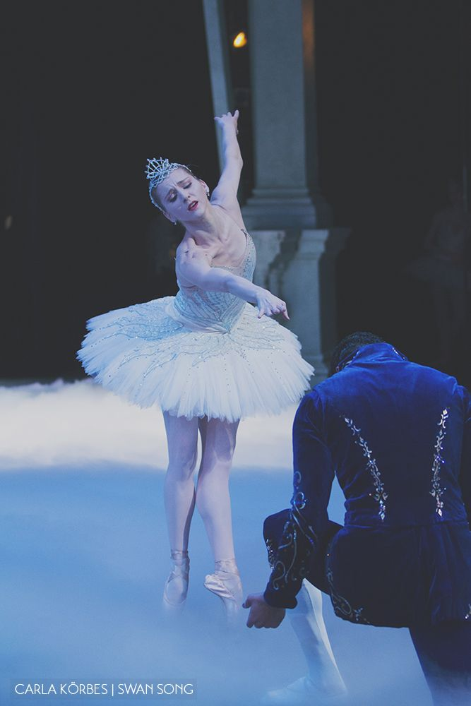 an essay on swan lake Unlike most editing & proofreading services, we edit for everything: grammar, spelling, punctuation, idea flow, sentence structure, & more get started now.
