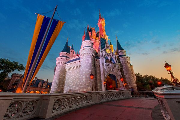 Considering staying at a Walt Disney World hotel, but unsure which resort is right for you? Our Disney hotel reviews share strengths and weaknesses of each hotel, give our opinion as to whether they are worth the money, and offer an idea of what type of guests (families, honeymooners, commando tourists, etc.) will like or dislike each hotel.