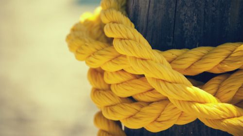 .Yellow Photography, Pearls, Colors, Yellow Ropes, Wallpapers, Knots, Bright Yellow, Peonies, Mustard Yellow
