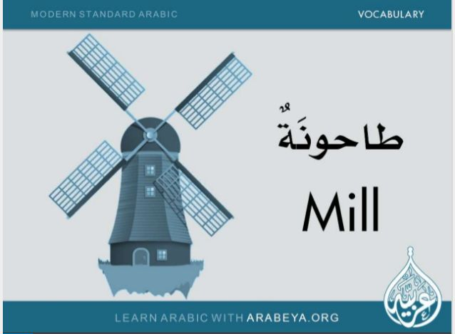 15 slides: Improve your vocabulary and learn new modern standard arabic words by Arabeya Arabic Language Center #learnarabiclanguage