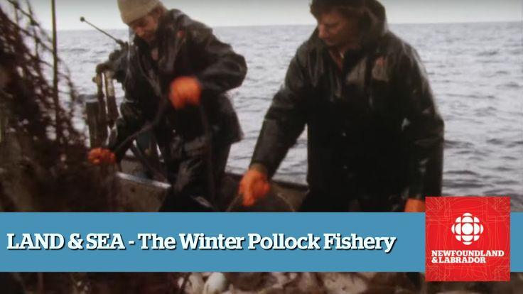 Land & Sea - The Pollock Fishery - Full Episode