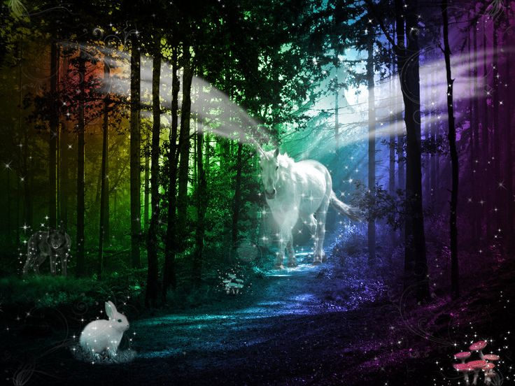 the enchanted forest beckoned me into Source: fragrantica an hour and half in, enchanted forest has become a very  forest green scent  all of this brings me to the issue of linearity.