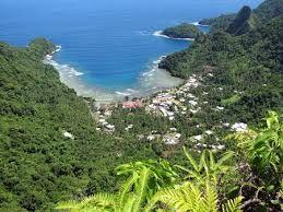 Los bosques allí están siempre verdes y la vegetación es de climas propios de la línea ecuatorial. Parque Nacional de Samoa Americana
