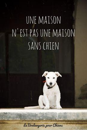 Une maison n'est pas une maison sans chien. Citations chiens, La BOulangerie pour Chiens