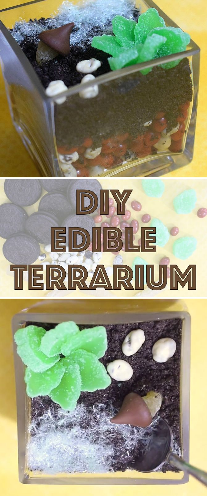 This cute terrarium is made from cookies and candy!