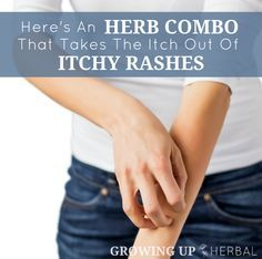 Here's An Herb Combo That Takes The Itch Out Of Itchy Rashes - Video | http://GrowingUpHerbal.com | Learn to identify these two must-have herbs to help with summer's itchy rashes!