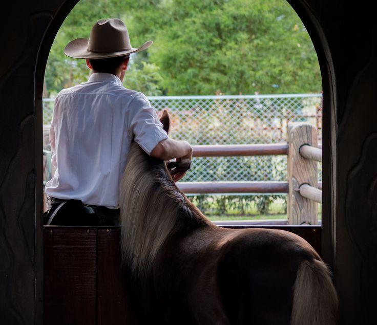 ¿mi amigo? | por himisterpadilla #Pony