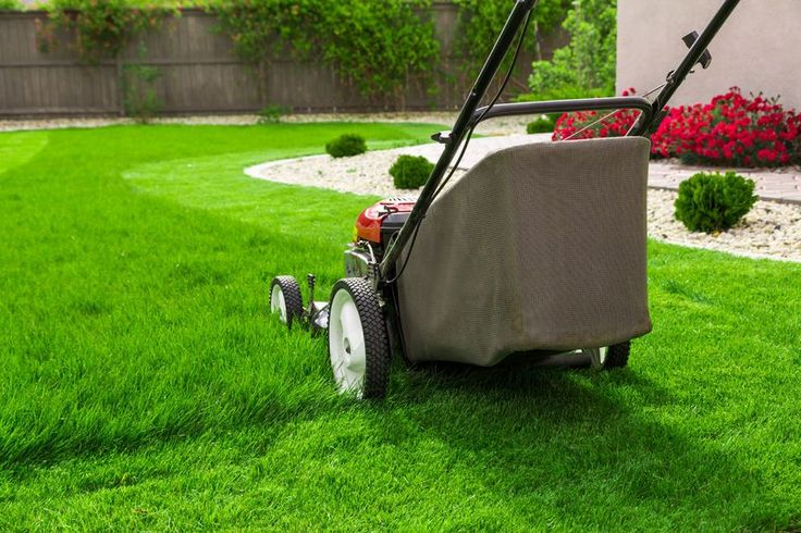 How to start your own lawn care business  Are you the type of person that loves being outdoors and being in charge of your own destiny? If you answered yes to this question then you may be the right person for opening your own lawn mowing service and landscaping business.   #business.business owner #independent #landscaping #lawn mowing #lawn service