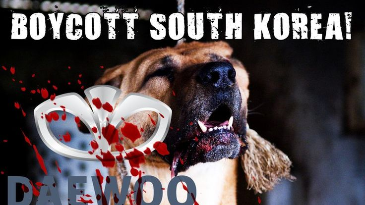 Petition · Geun-Hye Park: Boycott South Korean Dog and Cat Meat Cruelty! Boycott Daewoo! · Change.org