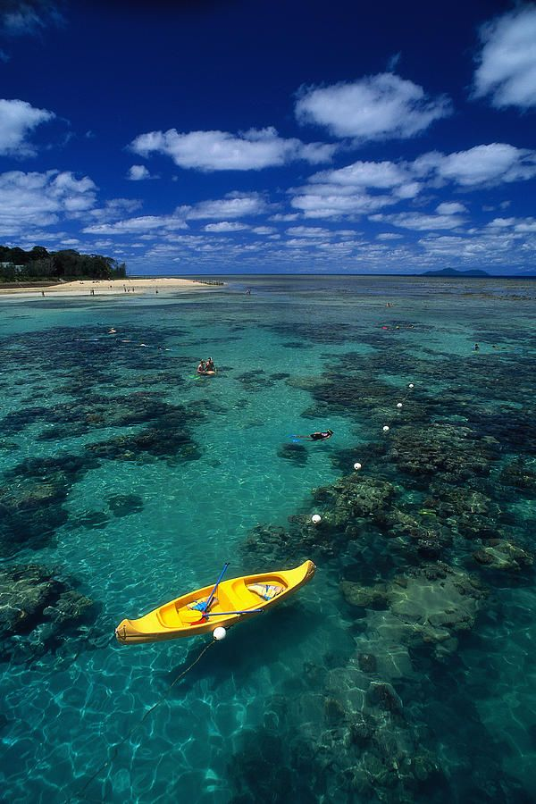 Snorkeling At The Great Barrier Reef, Australia.I want to go see this place one day.