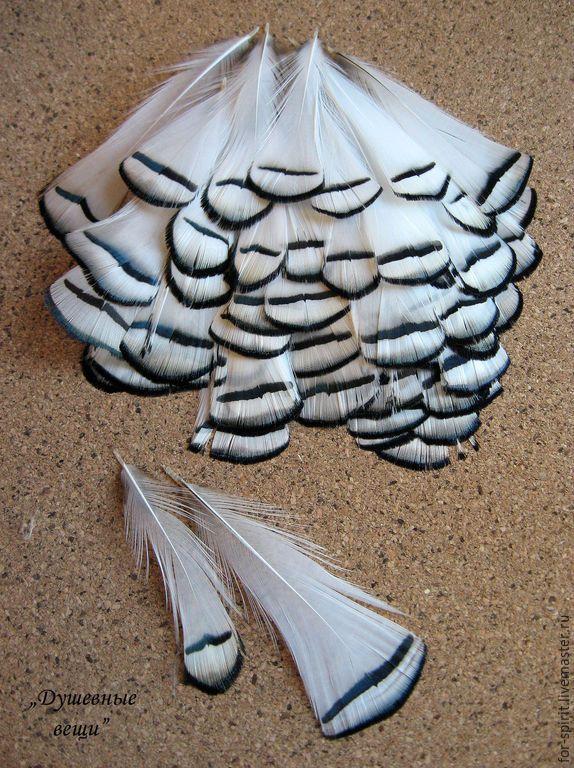 Купить (10 шт) Перья фазана черно-белые (2 вида) - перья, перо фазана