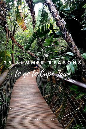 Need some good reasons why you should spend a summer in Cape Town, South Africa? I give you 25 including Table Mountain, the best beaches and penguins, the most delicious restaurants, the V&A Waterfront, and so much more. Click the pin for all 25 reasons to go now!