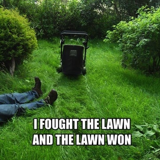 it u0026 39 s probably best to leave the mowing to the