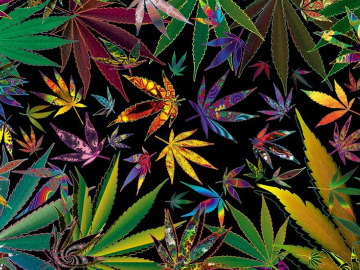 Trippy Multi Pot Leaves for your weed wallpaper enjoyment. I love the design on this cannabis wallpaper and you will too. Free to download.
