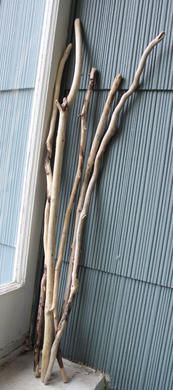 Skinny tall driftwood sticks branches perfect vase for Decoration sticks