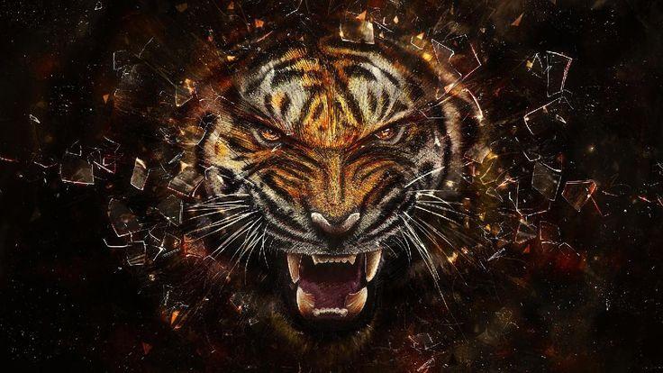 3D Tiger Roaring HD Wallpaper