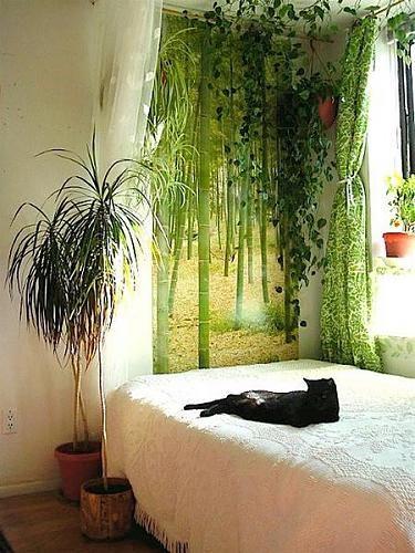 cute bedroom - Ideas In The Bedroom