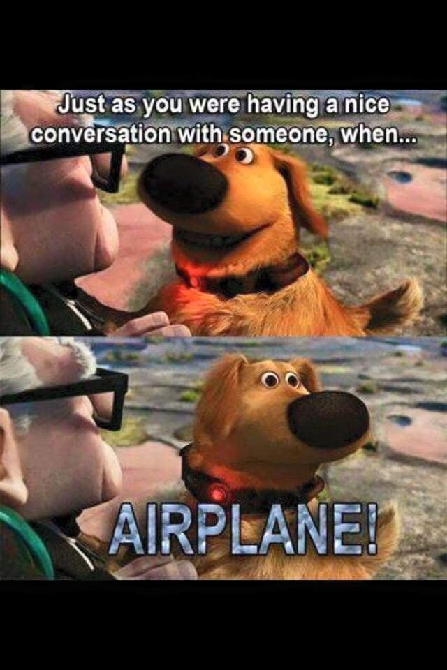 #aviationhumor #pilotlife #itsallabouttheplanes