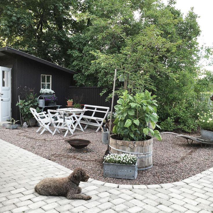 Vacker trädgård med sten och grus  #trädgård
