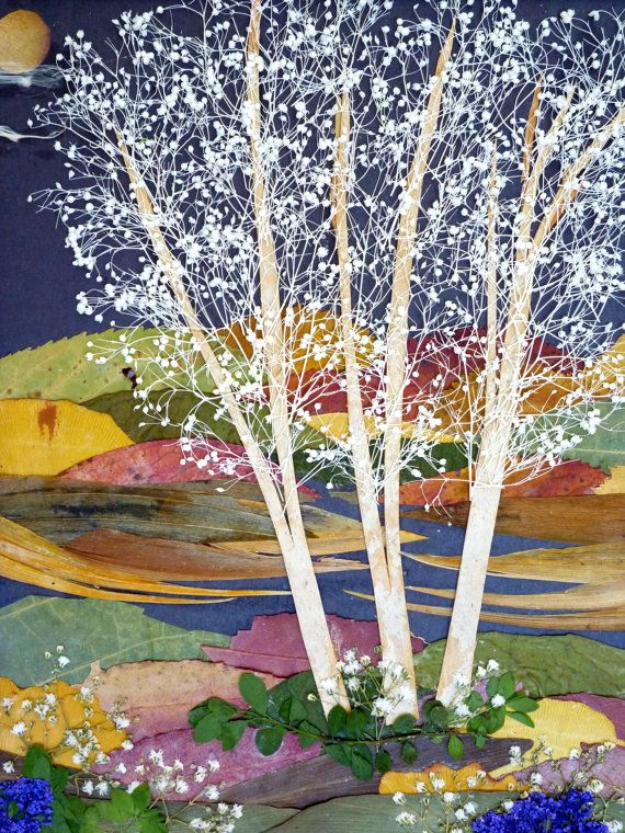 Spring Night   Original Pressed Flowers Art by OrganicArtWow, $95.00