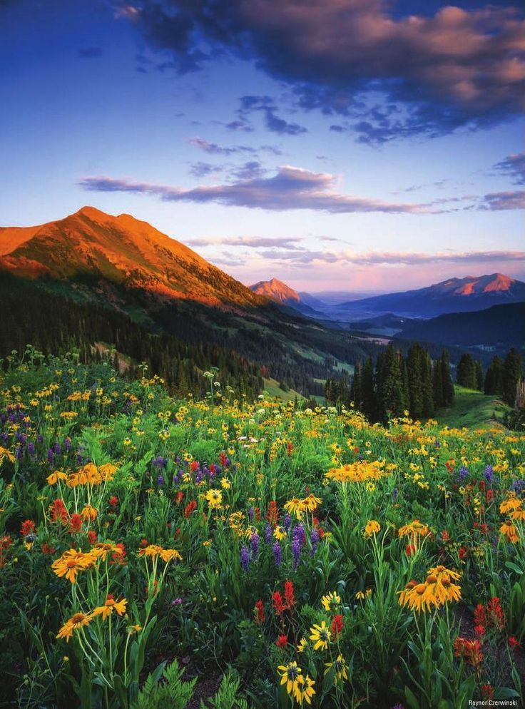 Crested Butte Magazine Summer 2015 Beautiful Landscapes Nature Pictures Colorado Photography