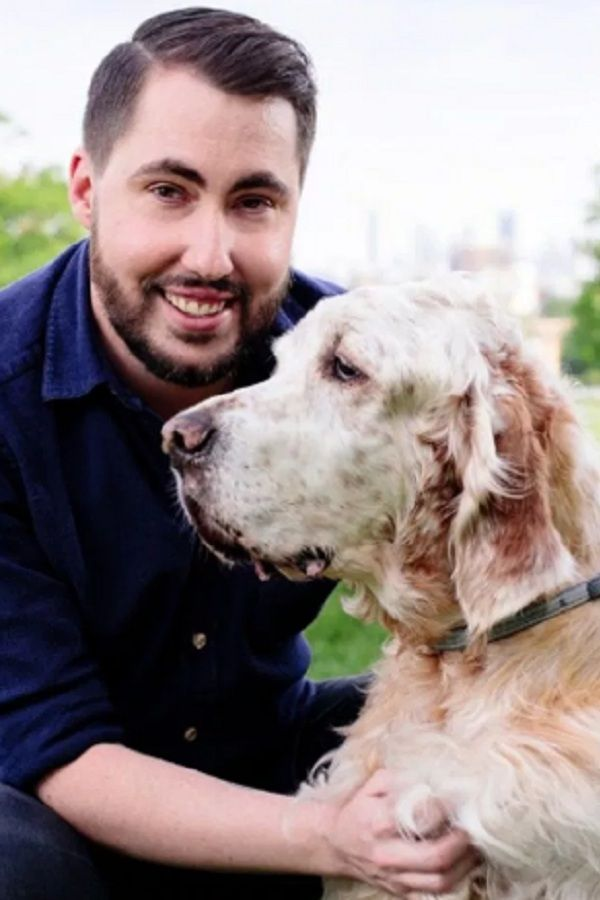 Dog Buyers Find Dream Pets Online From Caring Company Fighting For Animal Welfare Dog Owners Are Reassured By Tailwise S No Pupp Dogs Pets Online Dog Owners