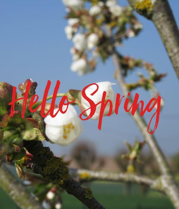 'Hello Spring ' Poster