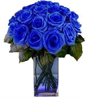 deep blue bouquet of roses!