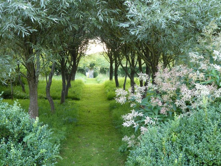 59 best garden plans history images on pinterest formal gardens mown path through silver leaved trees maybe weeping pear workwithnaturefo
