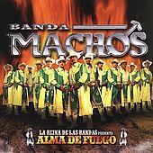 Banda Machos - Alma De Fuego