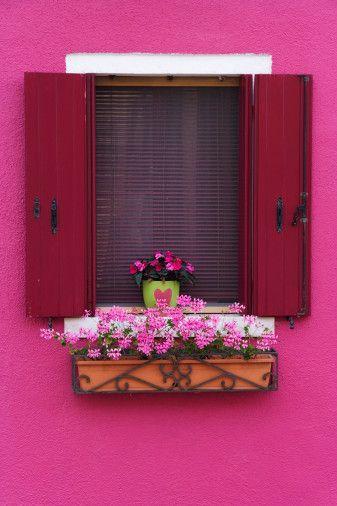 Shocking display; pink that is