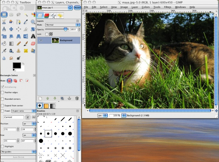 49 best photo post processing gimp images on pinterest photo gimp tutorial with photoshop gimp rounded corners fandeluxe Images