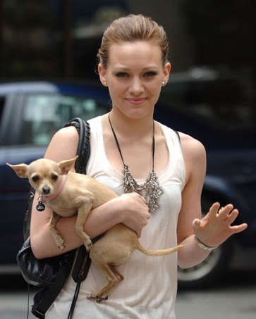 Top 10 Celebrity Pets - YouTube