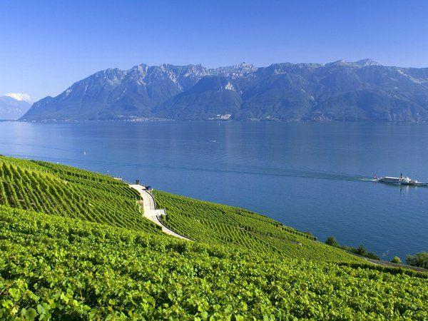 Альпы, горы, лето, озеро, швейцария
