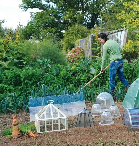 128 best garden cloche images on pinterest kitchen gardening veggie gardens and garden cloche. Black Bedroom Furniture Sets. Home Design Ideas