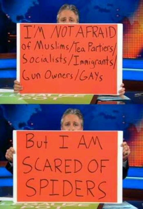 The Irrepressible Jon Stewart.