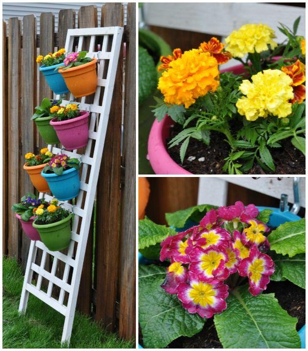 Beautiful Vertical Garden Ideas: Flowers & Bushes On Pinterest
