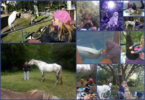 Formación de Comunicación Animal, Maestría Animal http://www.hijasdelatierra.es/cursos-presenciales/formacion-maestria-animal/