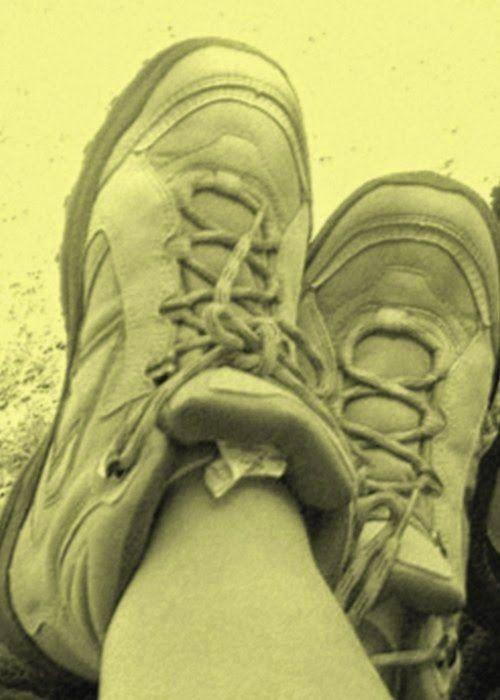 Queste pagine: Mi guardo le scarpe. Sono belle, bianche con due st...