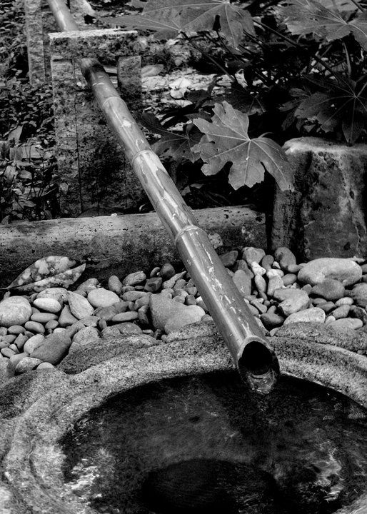 Japanese Water Gardens Fort Worth, TX Japanese water