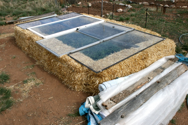 17 Best Images About Gardening Strawbales On Pinterest Gardens Seasons And Raised Beds
