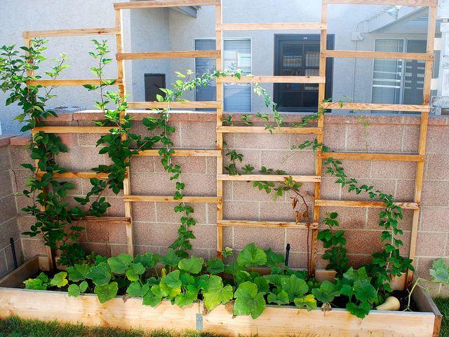 Bramble Planter Box by krakencrafts, via Flickr