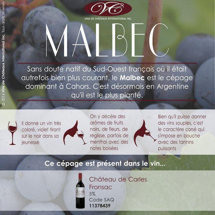 Retrouvez le cépage Malbec dans le vin Château de Carles, appellation Fronsac contrôlée, vin rouge de Bordeaux code SAQ 11378439 http://www.saq.com/page/fr/saqcom/vin-rouge/chateau-de-carles-2009/11378439