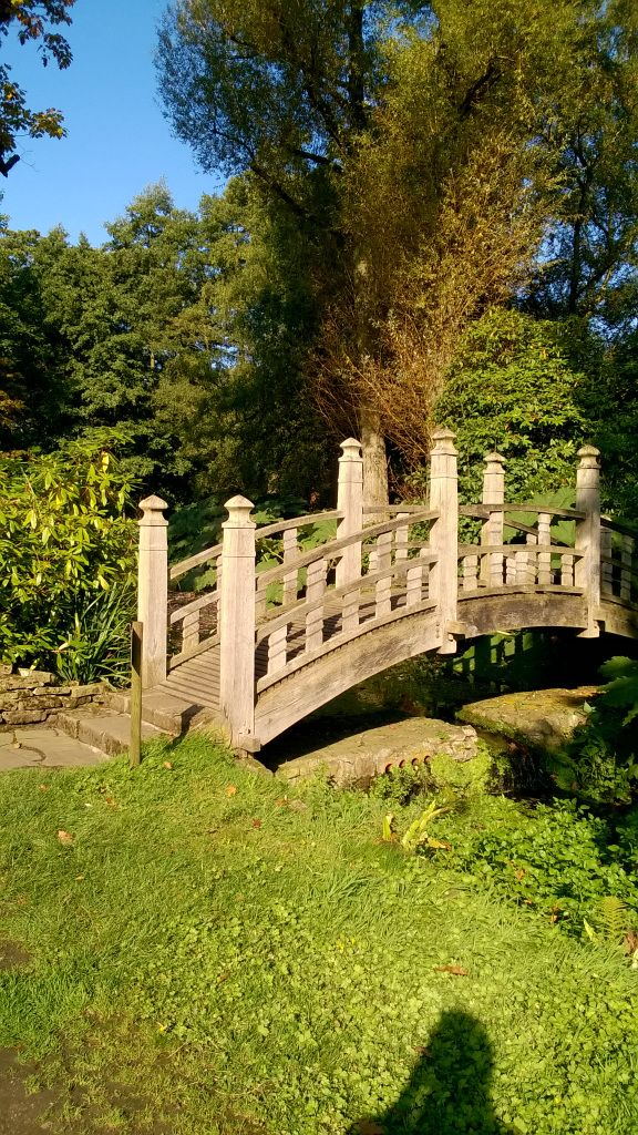 Wooden Bridge at Winterbourne Gardens, Birmingham #photography #sunny #autumn #bridge