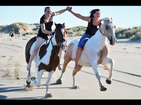 Alycia Burton- WHO is she? extreme bareback jumper - YouTube