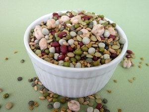 Sprout Lady Rita's Favorite Bean Certified Organic Non-GMO Sprouting Seed Mix with Fenugreek One Pound (price includes shipping)