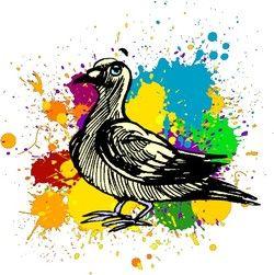 Les cartes postales de notre pigeon voyageur
