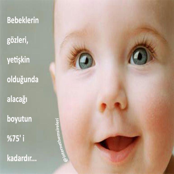 Bebeklerin gözleri