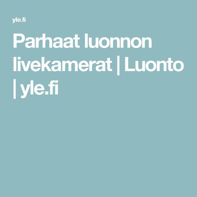Parhaat luonnon livekamerat  | Luonto | yle.fi