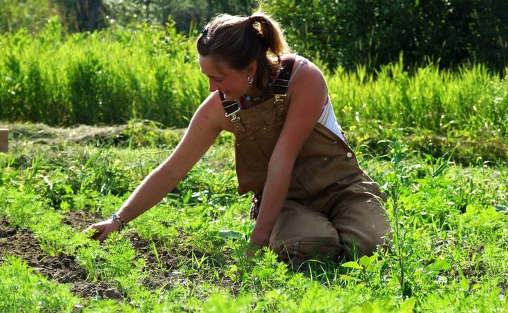 Want A Job After College? Study Agriculture. Modern FarmerPlant ScienceHobby  ...